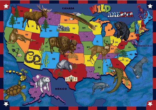 Wild America 169 Classroom Rug