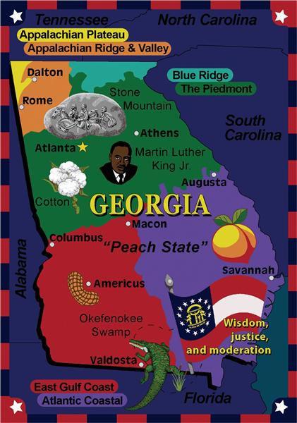 State The Facts Georgia 169 Classroom Rug